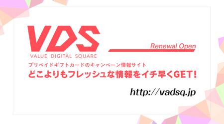 present1_vds